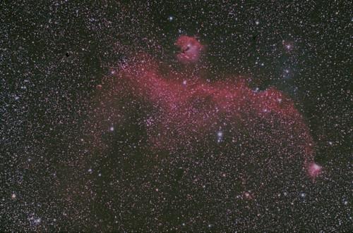 Ic2177_seagull_nebula___1024