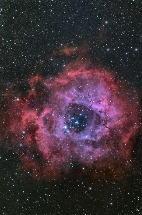 The_rosette_nebula_ngc2237_sh2275